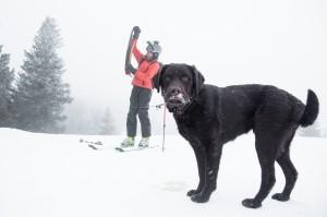 2015 Bruno Skiing-1
