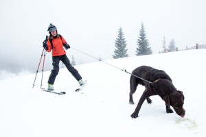 2015 Bruno Skiing-2